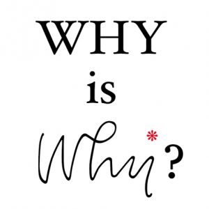 why is why?